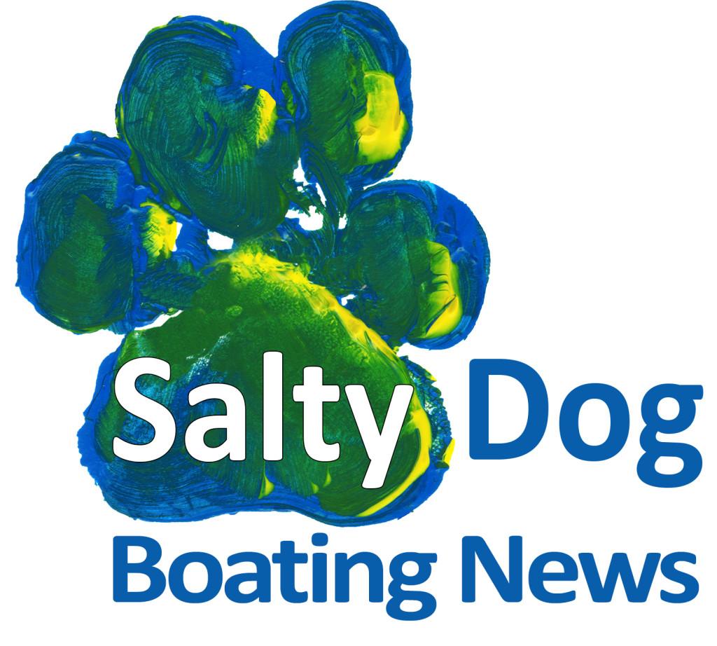 SDBN New Logo Proof